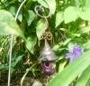 Purple confetti dew drop
