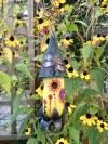 A Sunny Bloomer