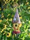 Sassy Wizard House